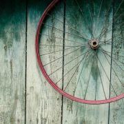 Nina Lishchuck Shutterstock