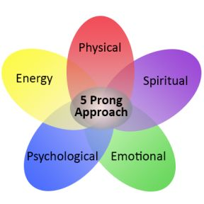Dr. Diane's 5 Prong Approach
