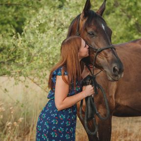 Horses receive better care now than ever before