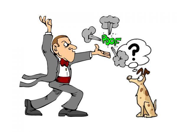 dog canine pet human animal bond consciousness thinking Imagery thought