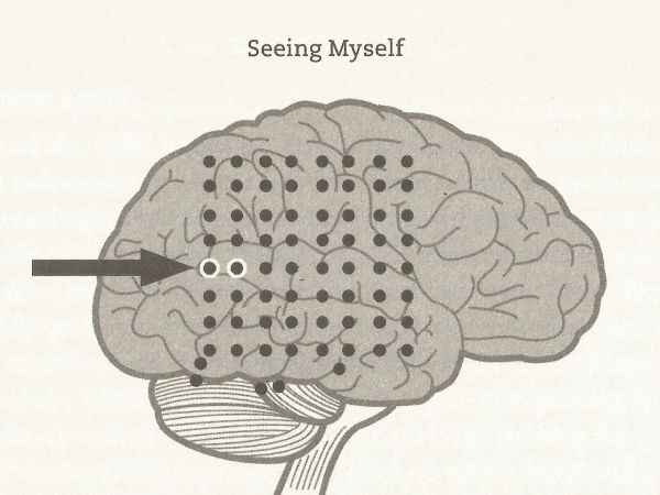 The arrow marks the spot on the brain that Blane stimulated to induce an OBE.