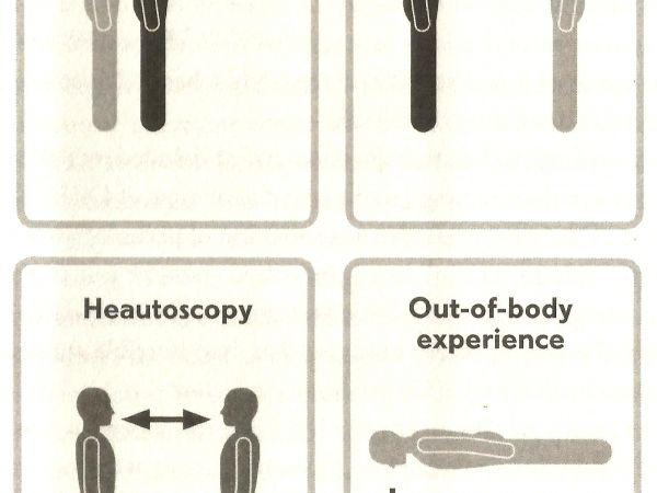 Four types of full body illusion