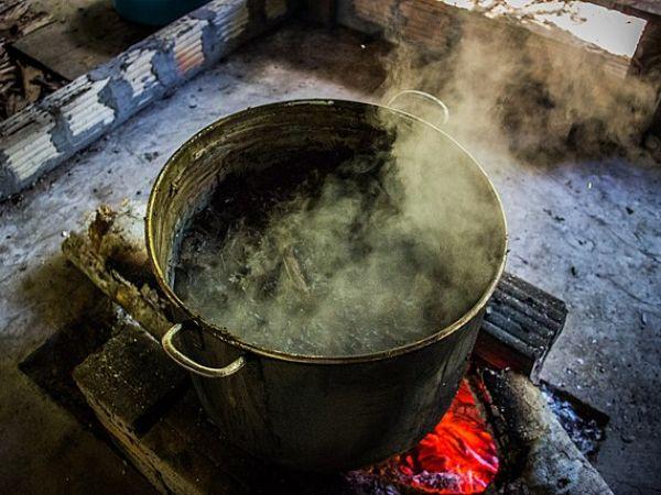 Ayahuasca brewing.