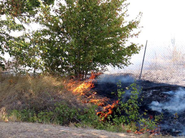 Brushfire in Bulgaria, near the Romanian border.