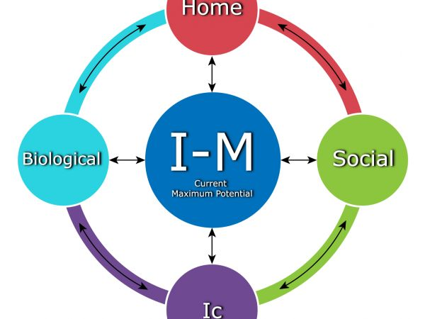 The I-M Approach