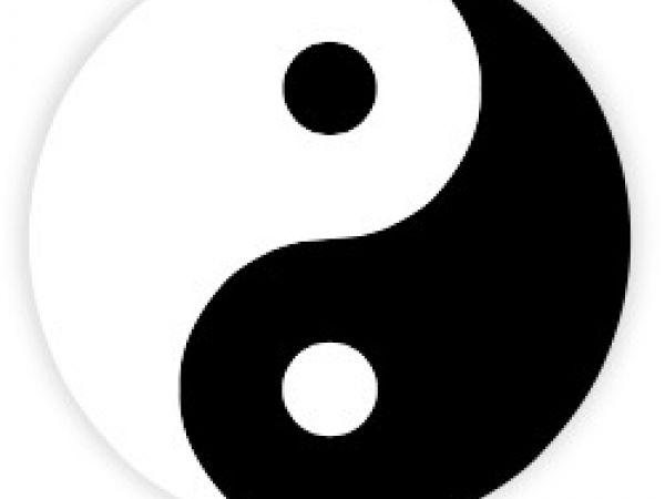"""""""Yin and Yang"""""""